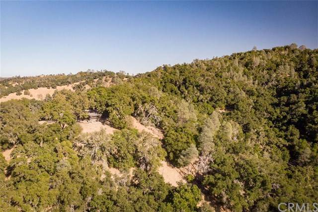 8600 Fawn Lane, Paso Robles, CA  (#SP20029818) :: RE/MAX Parkside Real Estate
