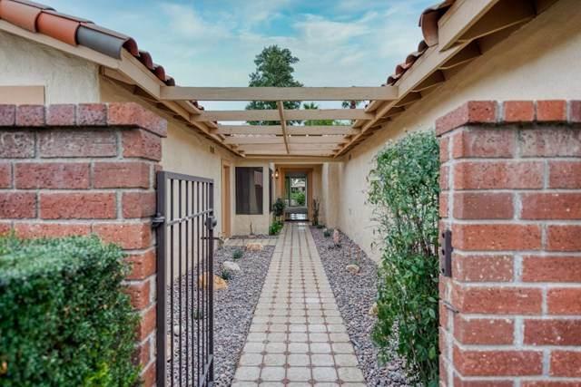 244 Serena Drive, Palm Desert, CA 92260 (#219038746DA) :: Z Team OC Real Estate