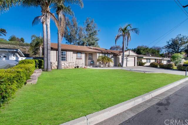 456 Pommel Way, San Marcos, CA 92069 (#SW20030864) :: Twiss Realty