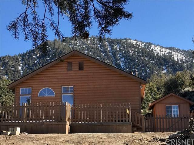 1728 Zermatt Drive, Pine Mountain Club, CA 90302 (#SR20029920) :: RE/MAX Parkside Real Estate