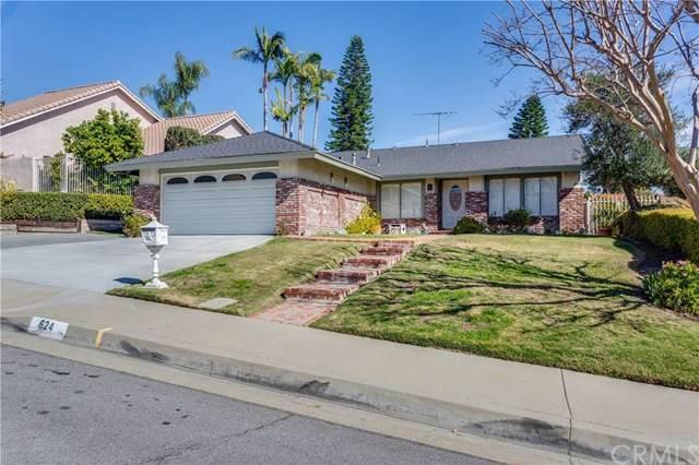 624 Big Creek Lane, Walnut, CA 91789 (#CV20032009) :: Allison James Estates and Homes