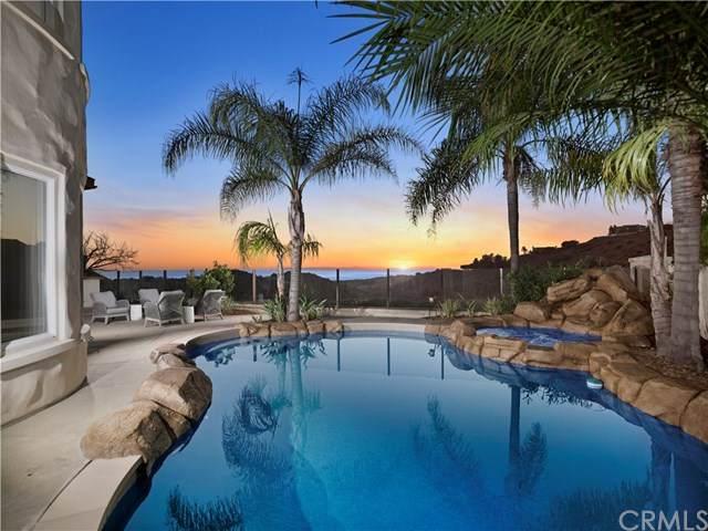 8 Almanzora, Newport Coast, CA 92657 (#OC20031713) :: Allison James Estates and Homes