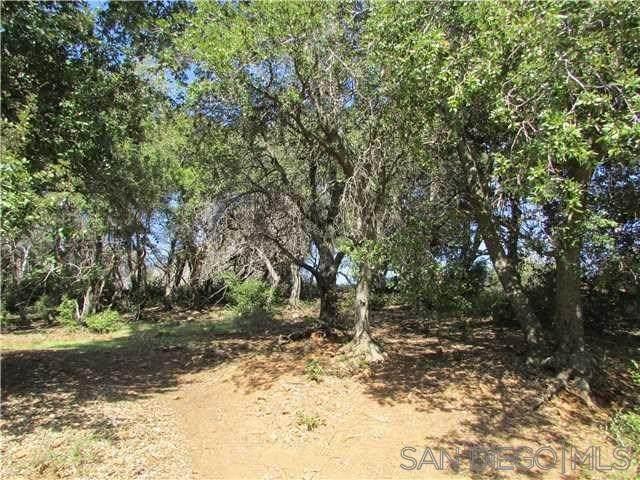 34888 Piute Trail, Julian, CA 92036 (#200007392) :: Realty ONE Group Empire