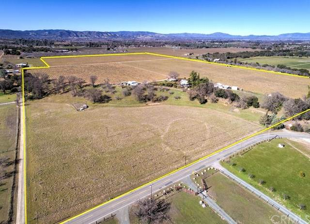 6245 Gold Dust Drive, Kelseyville, CA 95451 (#LC20032583) :: Twiss Realty
