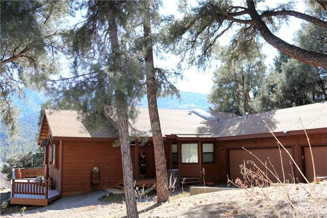 2813 Arctic Drive, Pine Mountain Club, CA 93222 (#SR20030634) :: Case Realty Group