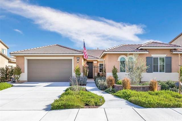32628 Cherokee Rose Lane, Winchester, CA 92596 (#SW20031836) :: The Ashley Cooper Team