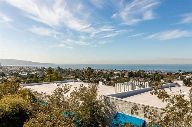736 Gould Avenue #24, Hermosa Beach, CA 90254 (#SB20031560) :: Case Realty Group