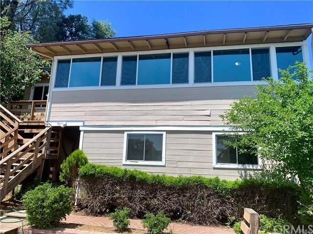 14805 Hillcrest Avenue, Clearlake, CA 95422 (#LC20032933) :: Allison James Estates and Homes