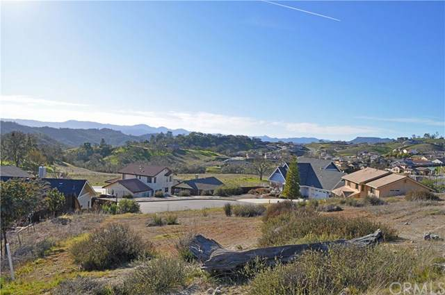 3660 Persimmon Place, Paso Robles, CA 93446 (#NS20032912) :: RE/MAX Parkside Real Estate