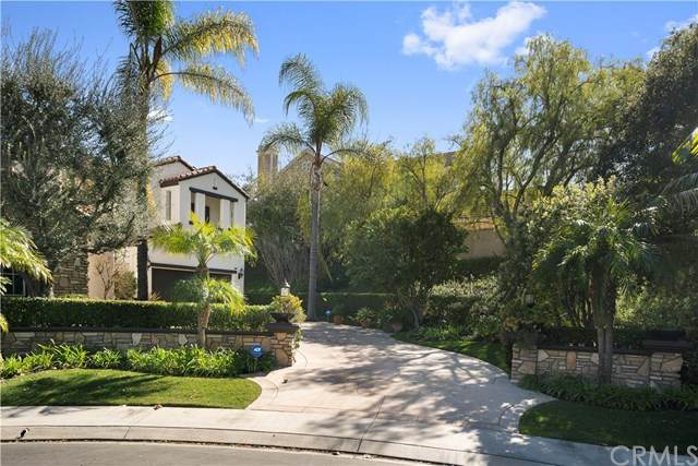 26 Peony Way, Coto De Caza, CA 92679 (#OC20032919) :: The Costantino Group | Cal American Homes and Realty