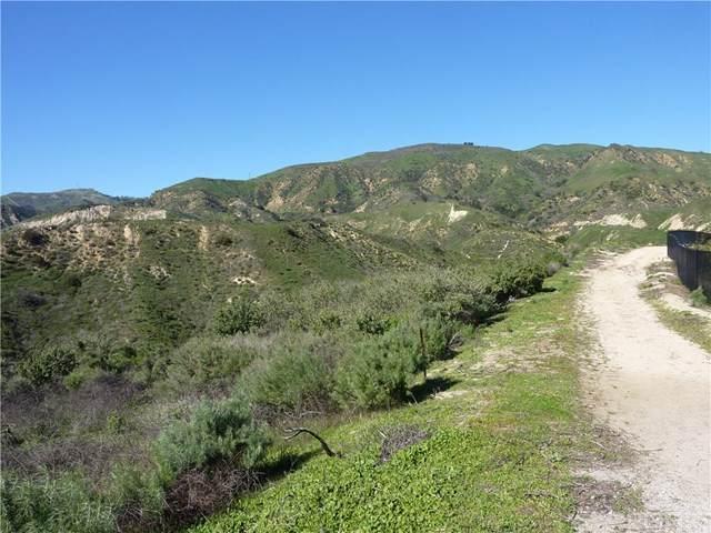 12303 Zelzah, Granada Hills, CA  (#SR20033187) :: Z Team OC Real Estate