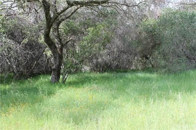 2 Ashworth Road, Mariposa, CA 95338 (#MP20033182) :: Allison James Estates and Homes