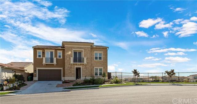 4703 Crespi Court, Carlsbad, CA 92010 (#SW20028209) :: Twiss Realty