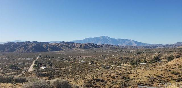 0 Little Morongo, Morongo Valley, CA 92256 (#JT20033425) :: Sperry Residential Group