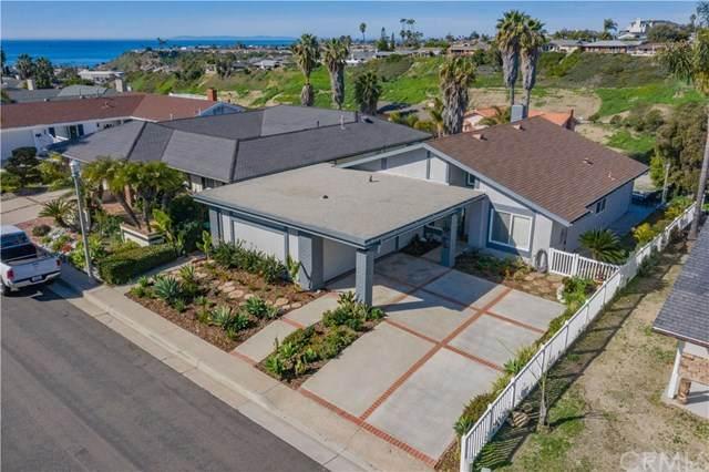 257 Via San Andreas, San Clemente, CA 92672 (#OC20033334) :: Case Realty Group