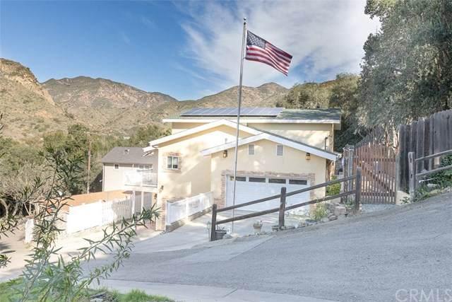 17462 Olive Hill Road, Silverado Canyon, CA 92676 (#PW20033559) :: The Ashley Cooper Team