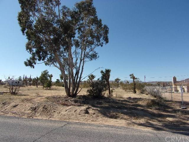 0 Ruidosa Ave, Yucca Valley, CA  (#JT20033637) :: Go Gabby