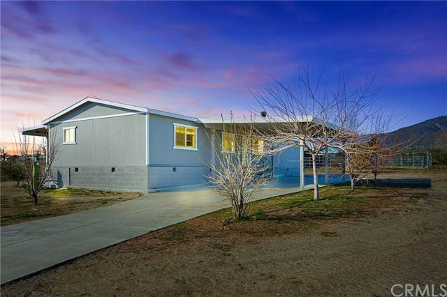 37657 Bonita Vista Road, Anza, CA 92539 (#SW20033765) :: RE/MAX Empire Properties
