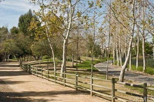 11 Azalea, Irvine, CA 92620 (#OC20032876) :: Case Realty Group