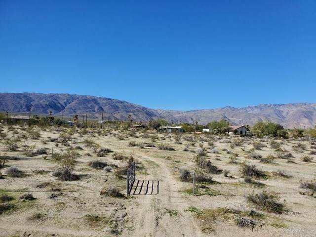Yaqui Pass Road, Borrego Springs, CA 92004 (#200007795) :: The Brad Korb Real Estate Group