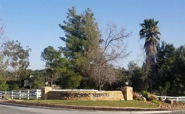 0 N Camino Del Vecino, Alpine, CA 91901 (#200007845) :: Steele Canyon Realty