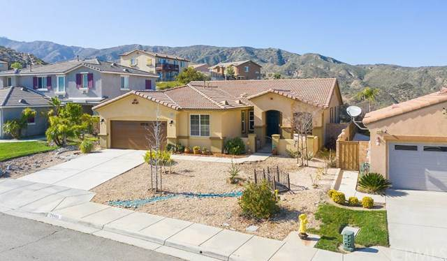 29480 Mcvicker Canyon Park Road, Lake Elsinore, CA 92530 (#SW20033246) :: Provident Real Estate