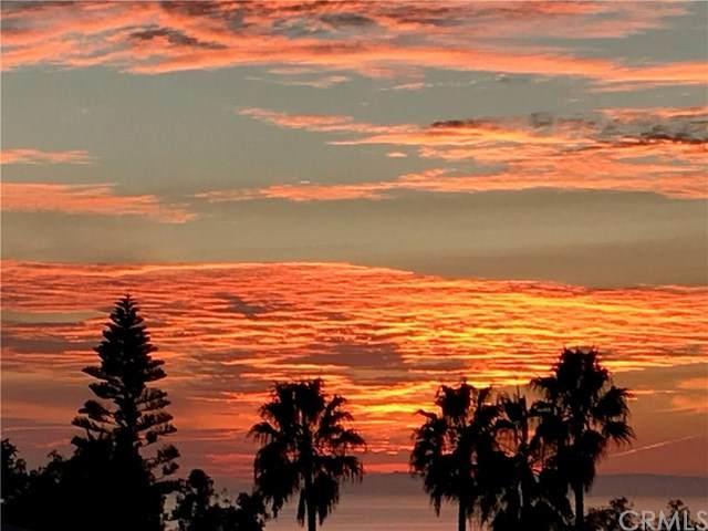 30802 S Coast Hwy Sp F15, Laguna Beach, CA 92651 (#OC20034285) :: Doherty Real Estate Group