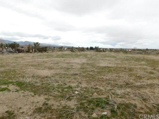 11664 Oasis Road, Pinon Hills, CA 92372 (#CV20034362) :: The Brad Korb Real Estate Group
