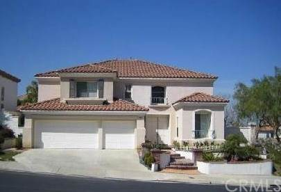 19037 Bramhall Lane, Rowland Heights, CA 91748 (#SW20033981) :: Allison James Estates and Homes
