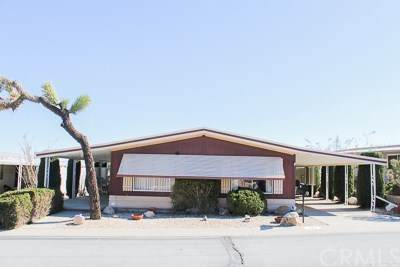 7501 Palm Avenue #172, Yucca Valley, CA 92284 (#JT20034437) :: The Brad Korb Real Estate Group