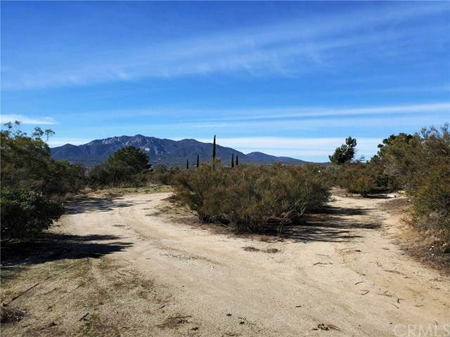 4 Broken Axle Road, Anza, CA 92539 (#SW20034563) :: The Costantino Group | Cal American Homes and Realty