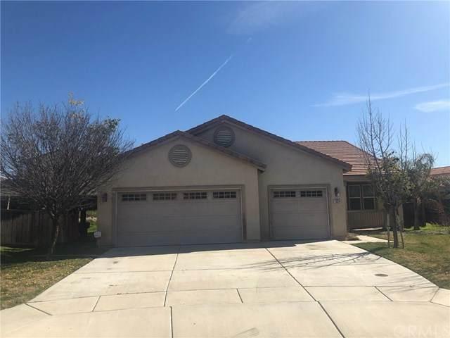 1024 Sykes Drive, San Jacinto, CA 92582 (#IG20034998) :: RE/MAX Empire Properties