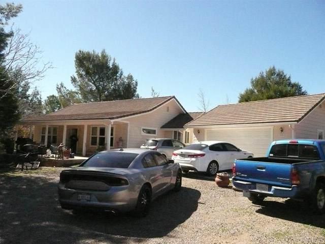 2256 Buckman Springs Rd, Campo, CA 91906 (#200008028) :: The Brad Korb Real Estate Group
