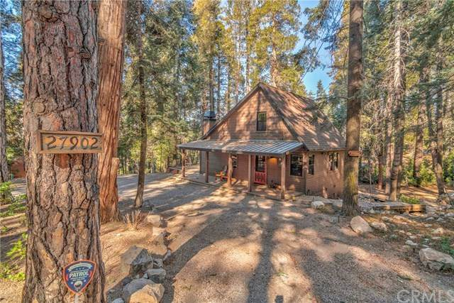 27902 Squirrel Lane, Lake Arrowhead, CA 92352 (#EV20035387) :: Allison James Estates and Homes
