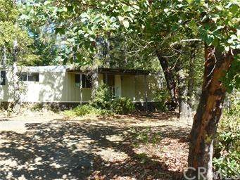 10780 Pine Point Road, Cobb, CA 95426 (#LC20035394) :: The Laffins Real Estate Team