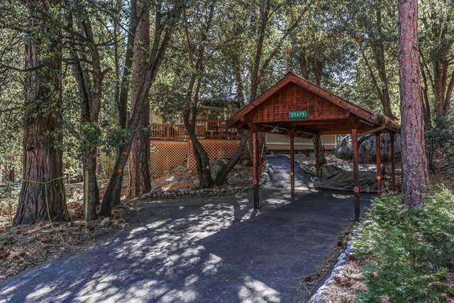 25495 Skyline Way, Idyllwild, CA 92549 (#219039191DA) :: The Laffins Real Estate Team