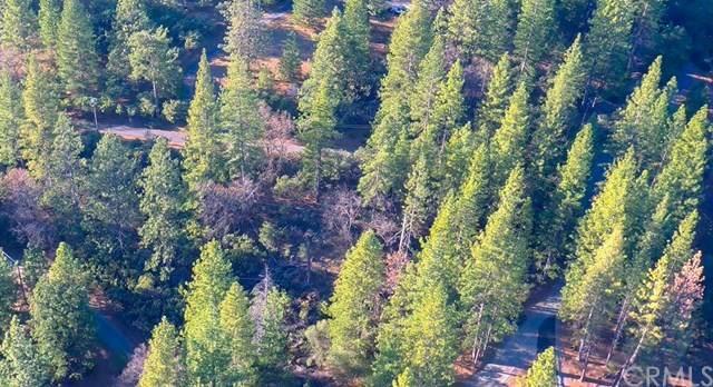 0 Meadowlark Way, Placerville, CA 95667 (#SN20032881) :: RE/MAX Empire Properties