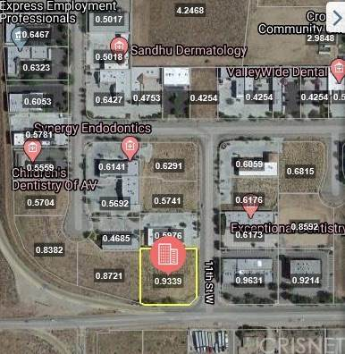 11 Vac/Cor Avenue N/11Th Stw, Palmdale, CA 93551 (#SR20035543) :: Team Tami