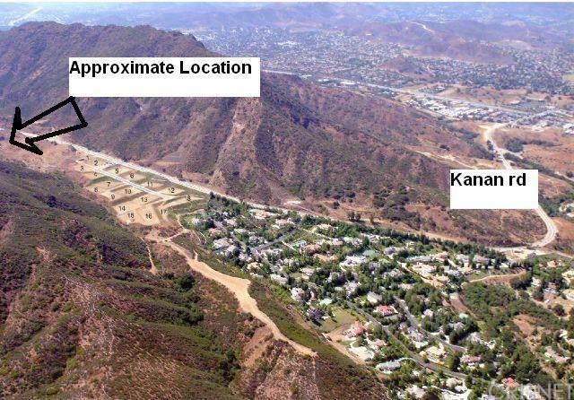3610 Kanan Road, Agoura, CA 91301 (#SR20035445) :: RE/MAX Innovations -The Wilson Group