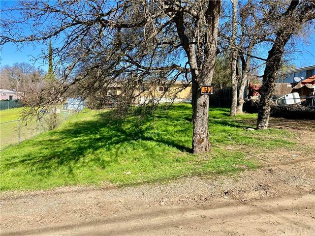 15704 38th Avenue, Clearlake, CA 95422 (#LC20035930) :: The Laffins Real Estate Team