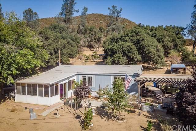 6316 Parkhill Road, Santa Margarita, CA 93453 (#SC20036517) :: RE/MAX Parkside Real Estate