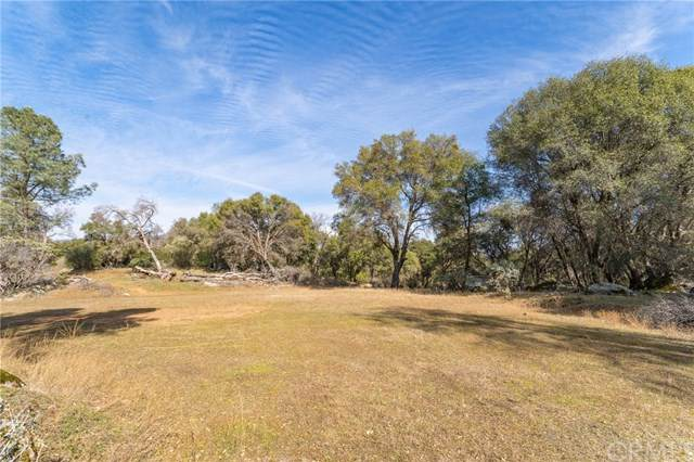 4001 Pacific Bars Road, Mariposa, CA 95338 (#MP20017160) :: Allison James Estates and Homes