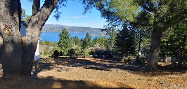 3616 Crestwood Drive, Kelseyville, CA 95451 (#LC20037306) :: Cal American Realty