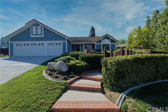 20800 Paseo Alto, Yorba Linda, CA 92887 (#PW20035533) :: Allison James Estates and Homes