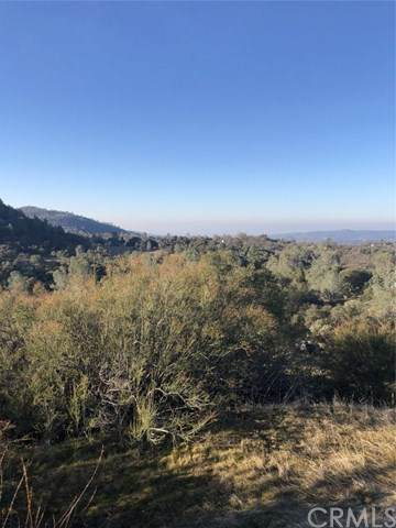 0-3.26 AC Douglas Trail, Coarsegold, CA 93614 (#FR20038077) :: Allison James Estates and Homes