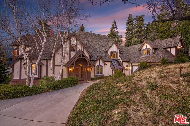 29082 Bald Eagle, Lake Arrowhead, CA 92352 (#20556600) :: Allison James Estates and Homes