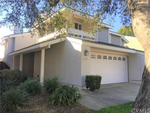 3747 Live Oak Drive, Pomona, CA 91767 (#CV20038099) :: RE/MAX Innovations -The Wilson Group