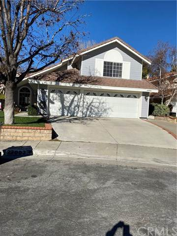 22003 Lucy Court, Saugus, CA 91350 (#WS20038196) :: Cal American Realty