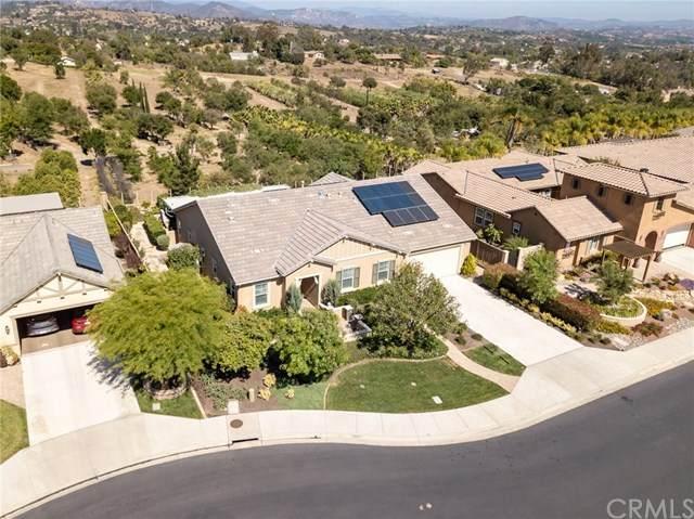 2060 James Gaynor Street, Fallbrook, CA 92028 (#SW20038349) :: A G Amaya Group Real Estate