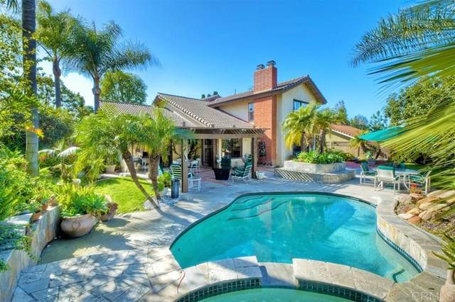 1536 Mission Meadows Dr, Oceanside, CA 92057 (#200008716) :: RE/MAX Masters